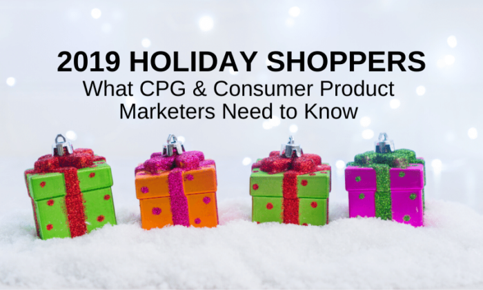 2019 Holiday Online Shopping Insights