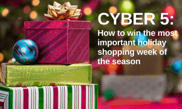 3 Ways to Succeed in Cyber 5 this Holiday Shopping Season